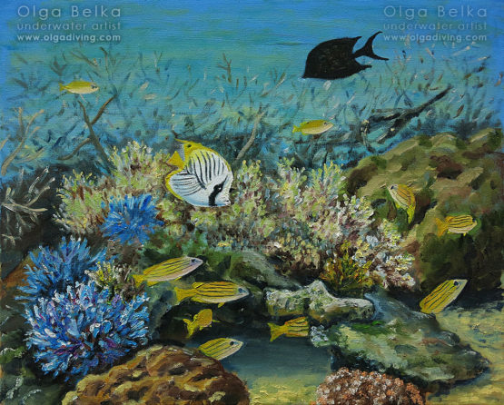 Underwater painting by Olga Belka - Be stripy