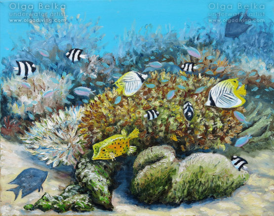 Underwater painting by Olga Belka - Boxy friend